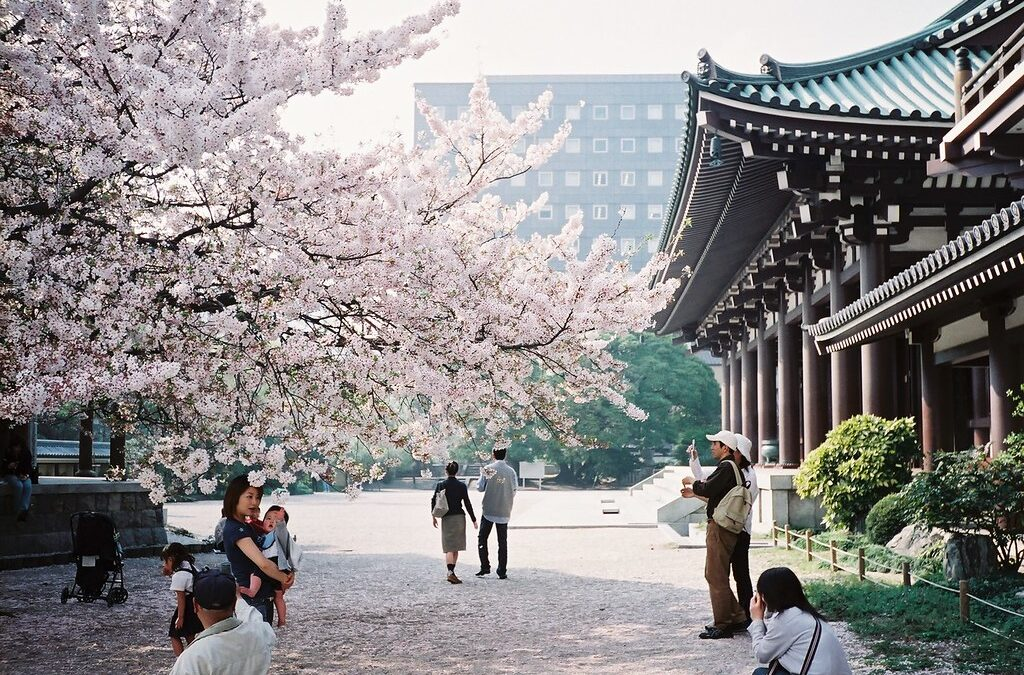 5 Best Places to Visit in Fukuoka